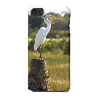 Great Egret at Viera Wetlands iPod Touch (5th Generation) Case