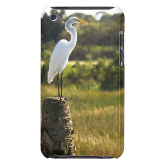 Great Egret at Viera Wetlands Case-Mate iPod Touch Case