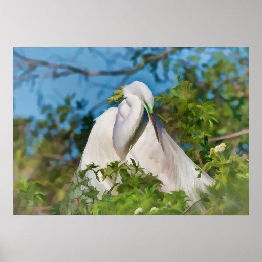 Great Egret in Motherhood Moment Print