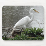 Great Egret Mouse Pad