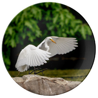 Great Egret Plate