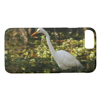 Great Egret Wading in Everglades iPhone 8/7 Case
