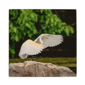 Great Egret Wood Coaster