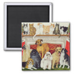 Great Expectations Square Magnet