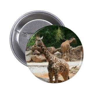 Great Giraffe Button
