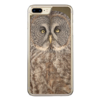 Great gray owl close-up, Canada Carved iPhone 8 Plus/7 Plus Case