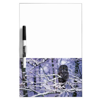 Great Gray Owl Dry Erase Board Message Board
