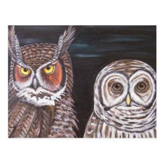 Great Horned & Barred Owls Postcard