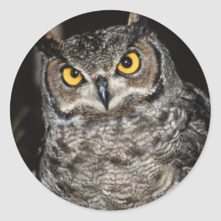 Great Horned Owl  2 Classic Round Sticker
