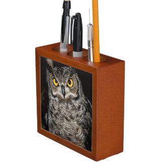 Great Horned Owl  2 Desk Organiser