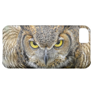 Great Horned Owl Following Eyes iPhone 5C Case