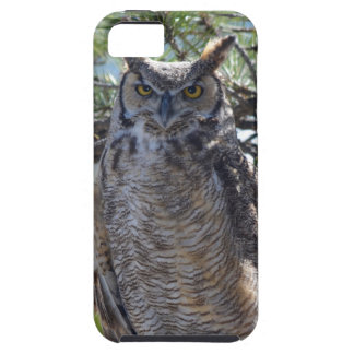 Great Horned Owl in the Tree iPhone 5 Case
