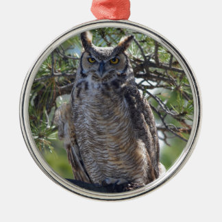 Great Horned Owl in the Tree Silver-Colored Round Decoration