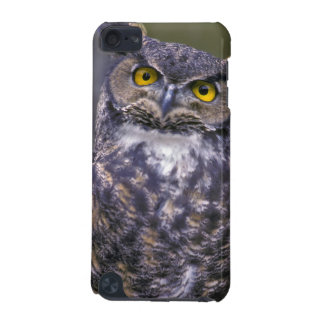 Great Horned Owl iPod Touch (5th Generation) Case