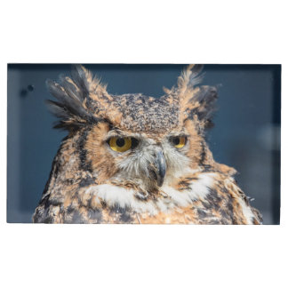Great Horned Owl Portrait Place Card Holder