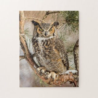 Great Horned Owl Puzzle