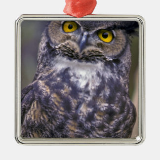 Great Horned Owl Silver-Colored Square Decoration