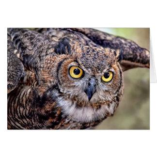 Great Horned Owl Taking Flight Card
