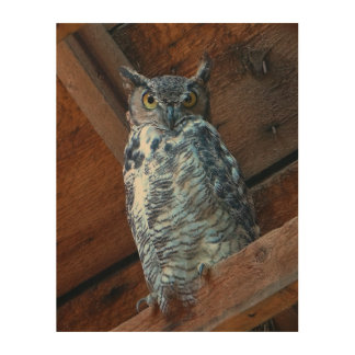 Great Horned Owl Wood Panel