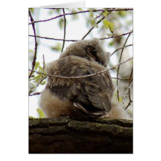 Great Horned Owlette Card