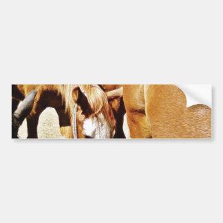Great Horse Bumper Sticker
