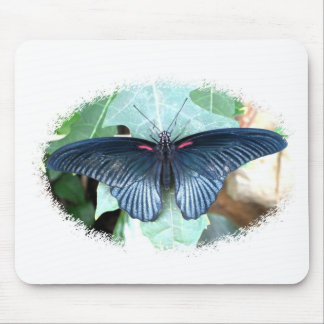 Great Mormon-Tropical Butterfly Mousepad
