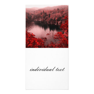 great nature photo cards