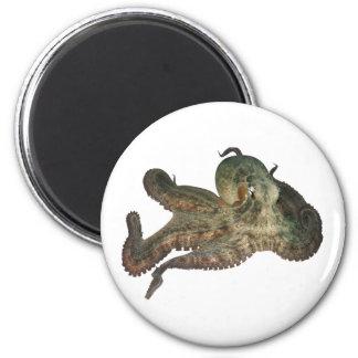 Great ocean octopus octapi 6 cm round magnet