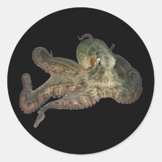 Great ocean octopus octapi round sticker