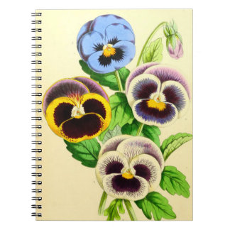 Great Pansies Notebooks