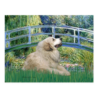 Great Pyrenees 2 - Bridge Postcard
