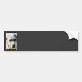 Great Pyrenees Bumper Stickers
