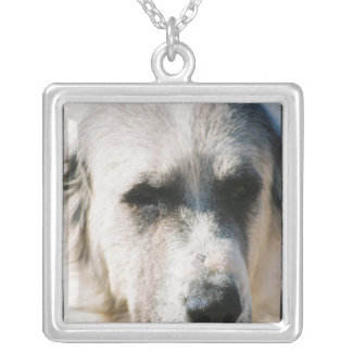 Great Pyrenees Dog Necklace