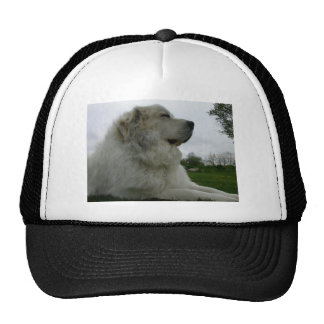 Great Pyrenees Hats