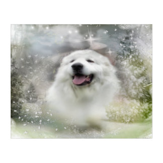 Great Pyrenees Winter Scene Acrylic Print