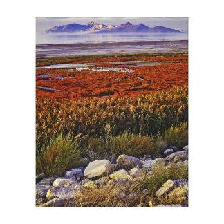 Great Salt Lake Canvas Print