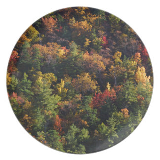 Great Smoky Mountain National Park Party Plates