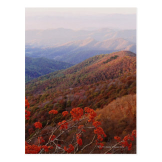 Great Smoky Mountain NP extends from North Postcard