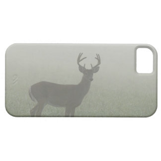 Great Smoky Mountains National Park, Tennesse, iPhone 5 Case