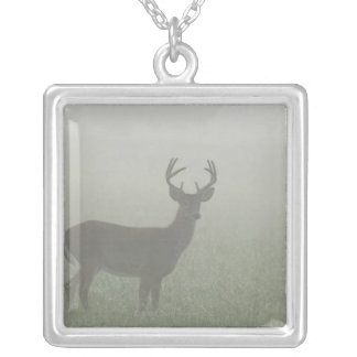 Great Smoky Mountains National Park, Tennesse, Silver Plated Necklace