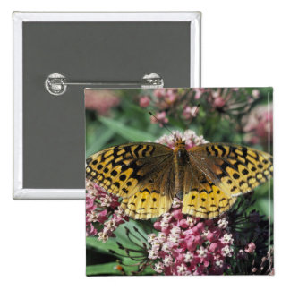 Great Spangled Fritillary Butterfly Buttons