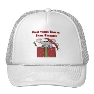 Great things Come in Small Packages Hat