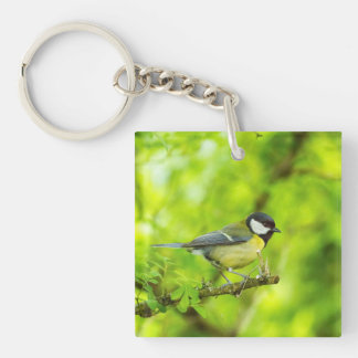 Great tit, parus major key ring
