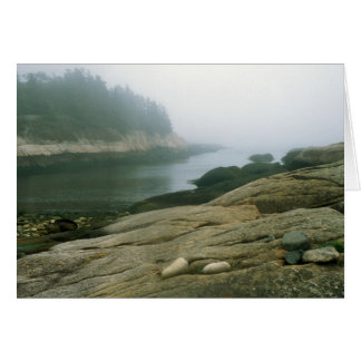 Great Wass Island Maine Rocky Shore Card