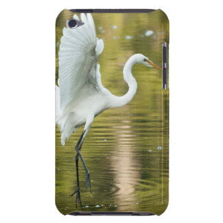 Great White Egret iPod Case-Mate Cases