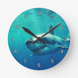 GREAT WHITE SHARK 1 CLOCK