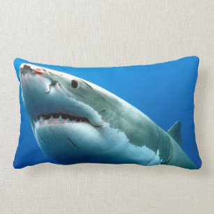 cd42a9d3d144 Great White Shark Gifts on Zazzle AU