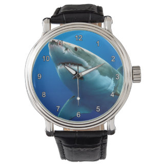 GREAT WHITE SHARK 3 WATCH