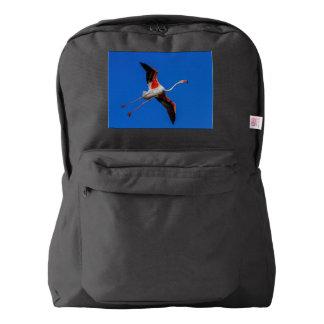 Greater flamingo, phoenicopterus roseus backpack
