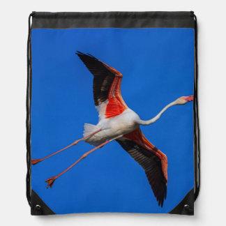Greater flamingo, phoenicopterus roseus drawstring bag